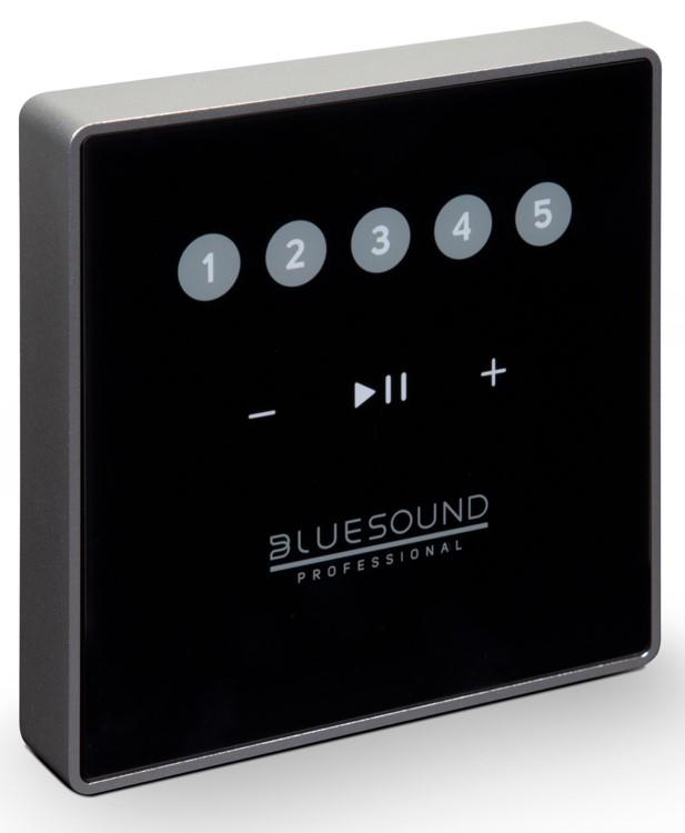 BLUESOUND CP100