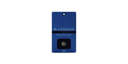bluesound_B160S